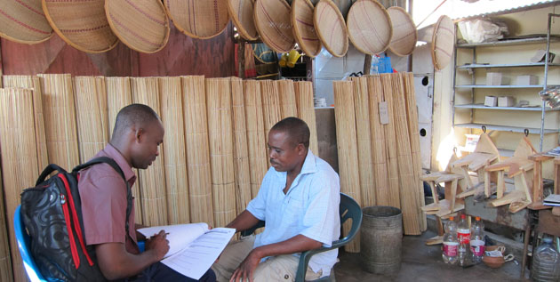 The role of technology, financial resources and business skills in microenterprise development in Mozambique